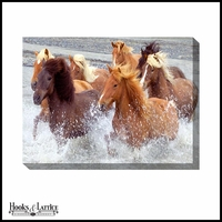 Wild Horses in Water - Canvas Artwork