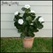 26in. Outdoor Artificial Geraniums - White