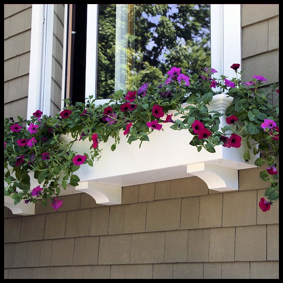 Window boxes window planters extraordinary selection in for Window design box