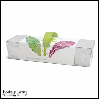 Windowsill Lettuce Grow Box