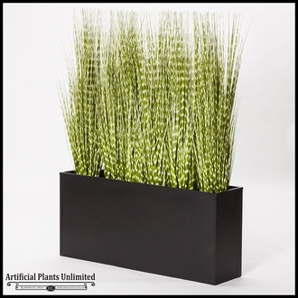 Zebra Onion Grass Screen in Rectangle Planter