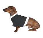 Dachshund Black Sweatshirt with Cream Rib
