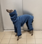 Italian Greyhound Dark Teal Hooded Fleece Bodysuit