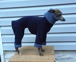 Italian Greyhound Extra Heavy Midnight Blue Hooded Bodysuit