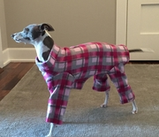 Italian Greyhound Fuchsia Plaid Indoor/Outdoor Bodysuit