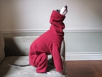 Italian Greyhound Scarlet Hooded Fleece Bodysuit