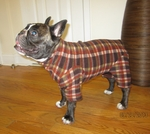 Pug Brown Plaid Indoor/Outdoor Bodysuit
