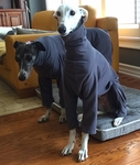 Whippet Charcoal Grey Fleece Jammies