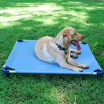 Dog and Pet Bed / Place Board