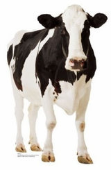 Cow Cardboard Cutout Life Size Standup