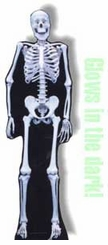 Skeleton Glows in the Dark! Cardboard Cutout Life Size Standup