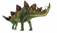Stegosaurus from The Natural History Museum Cardboard Cutout Life Size Standup