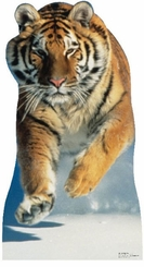 Tiger In The Snow Cardboard Cutout Life Size Standup