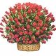 100 Red Rose Basket -Summer