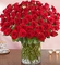100 Red Roses unforgettable