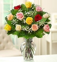 A Dozen Mixed Roses Mother's day