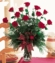 Christmas Red Roses