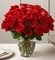 Love And Romace 2 Dozen red roses Arrangements