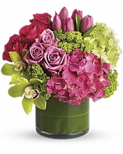 New Sensations- Happy Mother's Day!