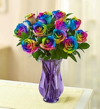 Rainbow Rose Color  out stock