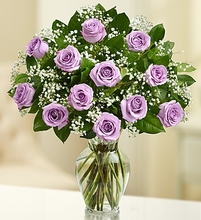 Rose Elegance Premium Long Stem Purple Roses