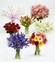Spring Monthly Flowers Gift Plan