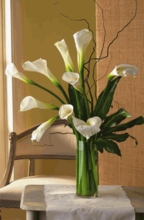 White Callas lilies Arrangement