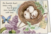 B1113 - Lilacs With Nest Birthday Cards