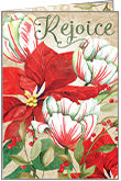 C1716 - Poinsettia Christmas Cards