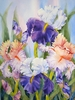 Mar 10-11 2018! - Irises Ready to Frame with Carol Fynn