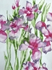 Saturday, Feb. 10th - Beautiful Vivid Florals with Suzanne Hetzel