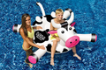 LOL Inflatable  54 In. Animal  Ride-On Pool Toy