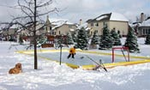 NiceRink� 20' X 40' Rink-In-A-Box