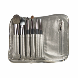 Travel Pro Brush Kit  Leatherette Carrier