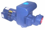 Berkeley Self Priming Pool Pump  172 GPM  5 HP 1 Ø S40102 LTM (M8)