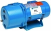 Goulds Water Technology Convertible Shallow & Deep Well Jet Pump 1 HP, 115/230V. # JRD10 (D)