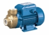 Pedrollo PK-BZ Series Bronze Body Peripheral End Suction Turbine Pumps
