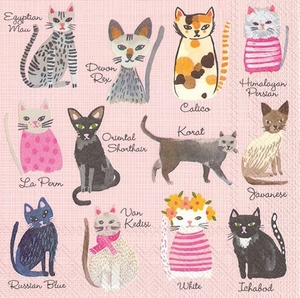 Cool Cats Paper Beverage Napkins - Click to enlarge