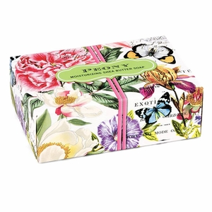 Michel Design Works Boxed Soap - Click to enlarge