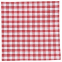 Now Designs Set of 4 Gingham Napkins
