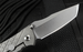 Chris Reeve Umnumzaan Tanto Blade - Framelock Folding Knife