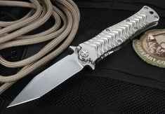 Darrel Ralph Custom Omega Maxx 4 - Tanto Folder