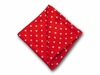 "Pocket Square ""Red Polka"""