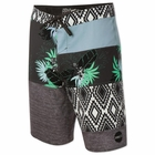 O'NEILL Hyperfreak Eclectic Mens Board Shorts