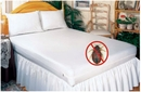BED BUG SOLUTION Queen Zippered Mattress Cover