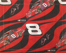 Dale Earnhardt Jr. #8 Sham