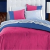 Dorm Room In A Box for XL Twin College Beds (10 PC Set) Rose/Blue