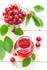 ~ Broad-Spectrum Health Properties of Tart Cherries
