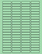 "1 3/4"" X 1/2"" PASTEL GREEN LABEL (GL0517PG)"
