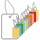 SMALL COUPON TAGS, BLANK, STRUNG